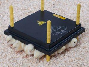 warmteplaat voor kuikens 30cm